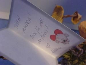 Jag älskar dig... tusen hundra! (satt på en blomma som jag gav Linnéa för ett år sedan)
