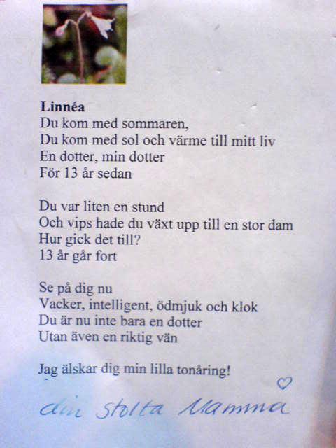 fylla 1 år dikt Ludmillas Blogg » Min fina 13 åring fylla 1 år dikt