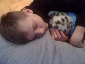 Oscar är hemma, och trött...