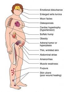 kortison biverkningar cancer